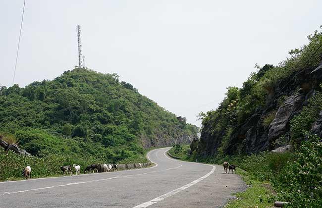 Cat ba island Road